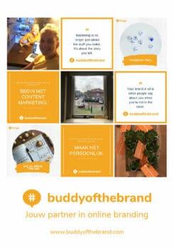 Buddy of the BrandAdvertentie Tulpenrallye (2)